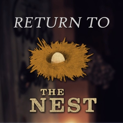 Return to The Nest - A Sit-down with Scout Expedition Co.