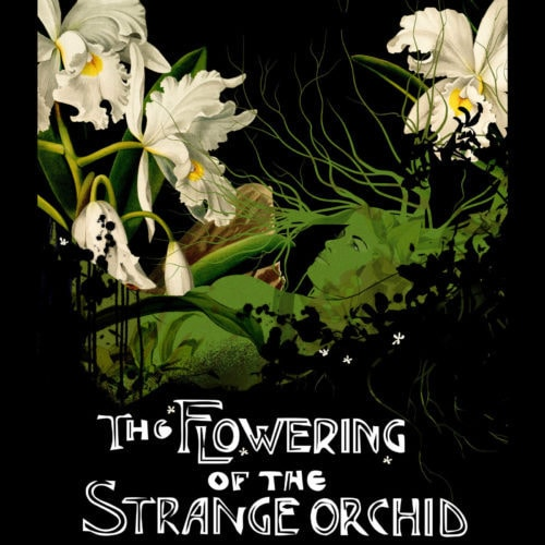 The Flowering of the Strange Orchid - Disco Dining Club | Courtney Nicols - Andy Alexander - Grim Wreather - Halloween - Hall of Mirrors