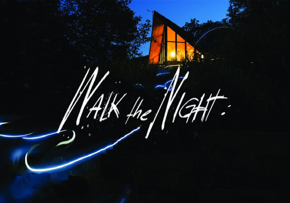 Walk the Night | Logo