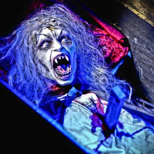 Scream in the Dark Haunted Halloween Maze, Home Haunt, Lake Forest, CA, Orange County