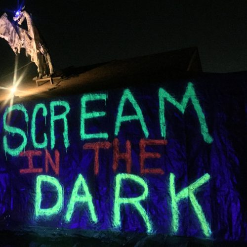 Scream in the Dark 2019
