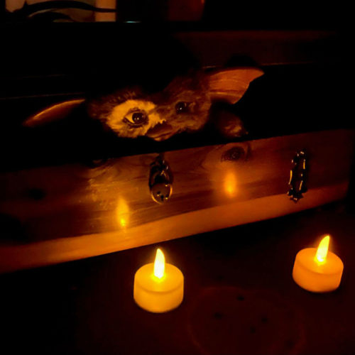 Gremlins Fan Tribute | Twisted Minds Productions